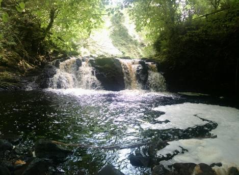 Glenariff Forest Park.