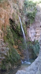 Hiking to see waterfalls at Engedi