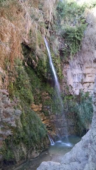 Hiking to see waterfalls at Engedi