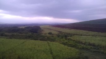 South African scenery