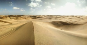 Sand dunes as far as the eye can see.