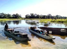 Mokoro boats