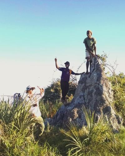 Huge termite mounds occupy the Okavango Delta